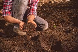 Kiểm nghiệm đất chi phí thấp, nhận kết quả nhanh chóng tại VnTest